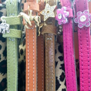 Mane Jane Belts